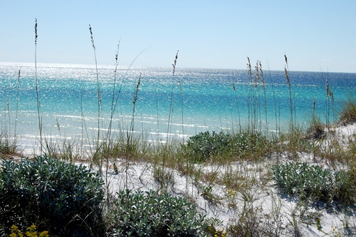Winter colors on the Gulf of Mexico